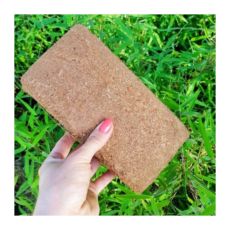 Brykiet kokosowy - ziemia do wysiewu nasion roślin egzotycznych