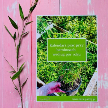 E-book: 'Kalendarz prac przy bambusach według pór roku'