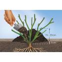 Ochrona zimowa - ściółka dla bambusów i innych roślin 20l COMPO