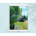 Zestaw dla architektów: 4 produkty cyfrowe o bambusach!